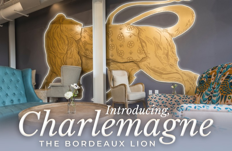 Introducing Charlemagne, the Bordeaux Lion