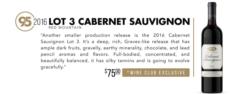 2016 Lot 3 Cabernet scores 95 Points!